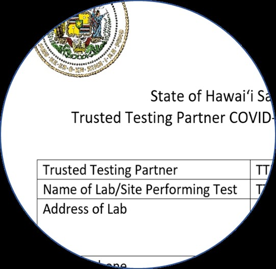 Travel Partners Hawai I Doh Info Resources For Managing Covid 19